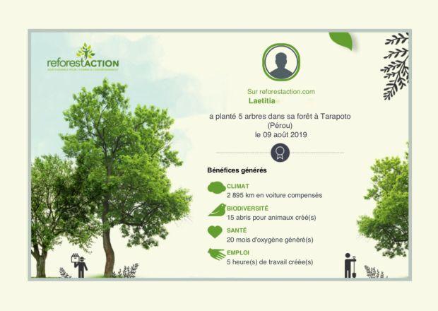 Certificat de plantation Reforest'Action. 5 arbres plantés au Perou.